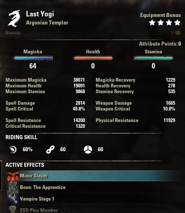 one bar Magicka Templar Solo Build